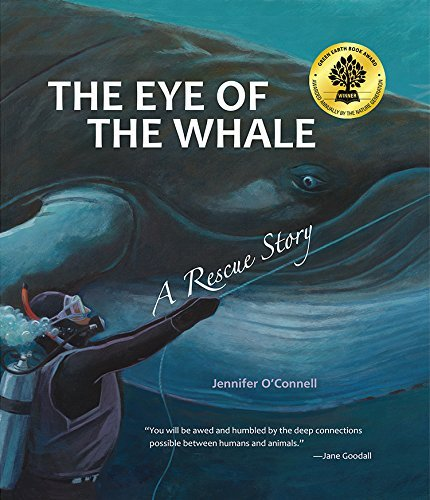 Jennifer O'connell Eye Of The Whale