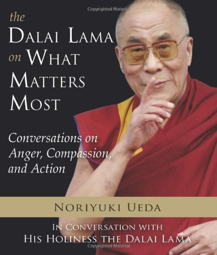 Noriyuki Ueda The Dalai Lama On What Matters Most Conversations On Anger Compassion And Action
