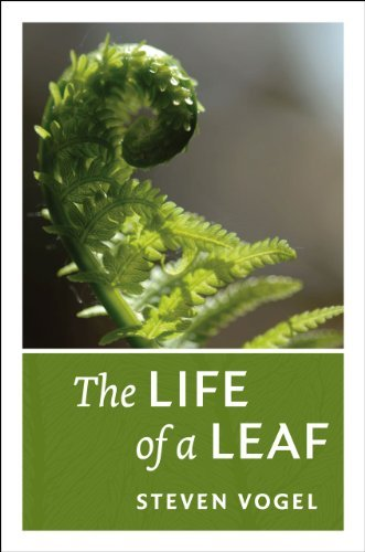 Steven Vogel The Life Of A Leaf