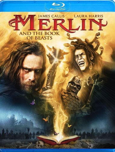 Merlin & The Book Of Beasts Callis Harris Blu Ray Ws Nr