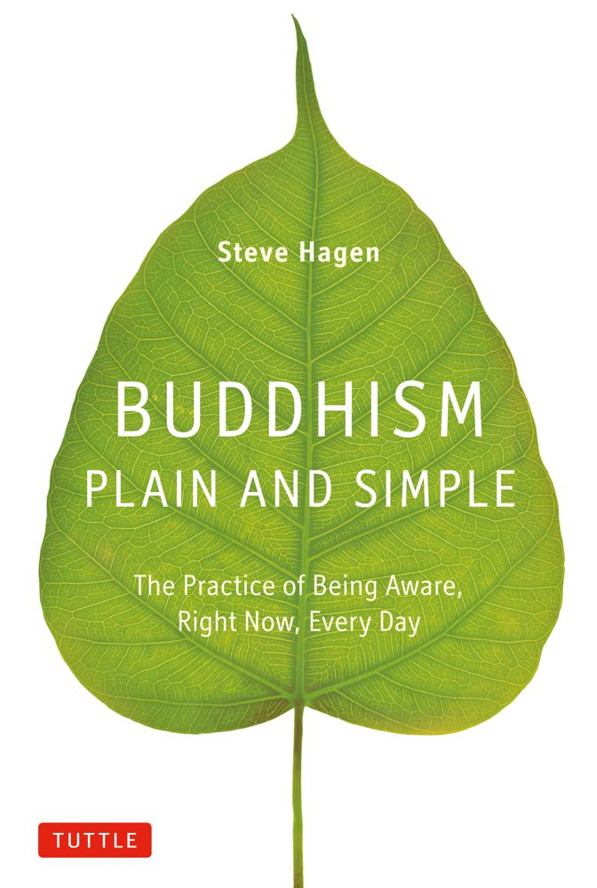 Steve Hagen Buddhism Plain And Simple The Practice Of Being Aware Right Now Every Day