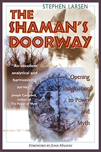 Stephen Larsen The Shaman's Doorway Opening Imagination To Power And Myth