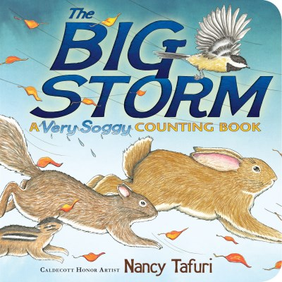 Nancy Tafuri The Big Storm A Very Soggy Counting Book