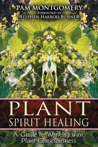 Pam Montgomery Plant Spirit Healing A Guide To Working With Plant Consciousness