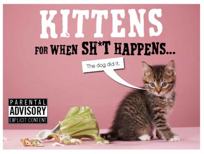 Trevor Davies Kittens For When Sh*t Happens