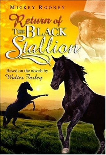 Return Of The Black Stallion Based On The Novels Rooney