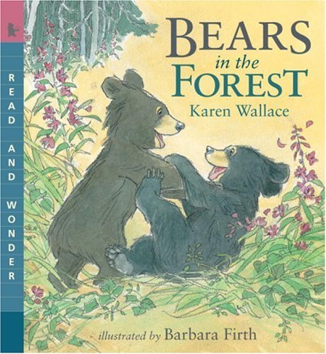 Karen Wallace Bears In The Forest