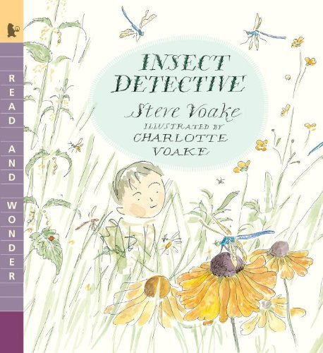 Steve Voake Insect Detective Read And Wonder
