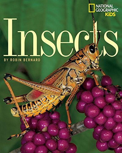 Bernard Insects Trade