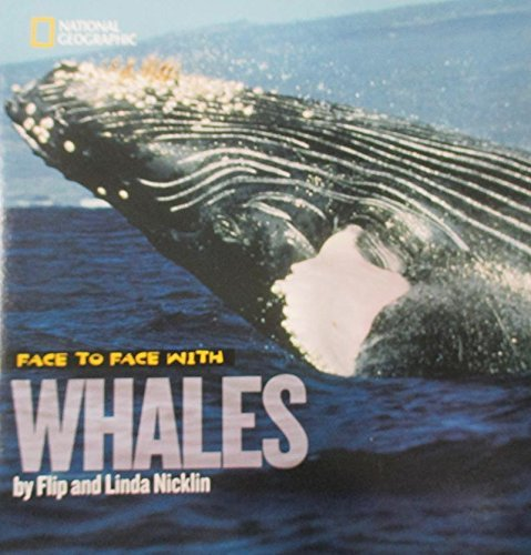 Flip Nicklin Face To Face With Whales