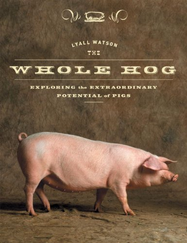 Lyall Watson Whole Hog The Exploring The Extraordinary Potential Of Pigs