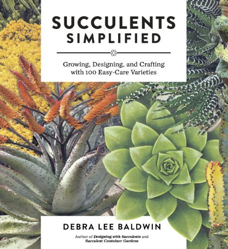 Debra Lee Baldwin Succulents Simplified Growing Designing And Crafting With 100 Easy Ca