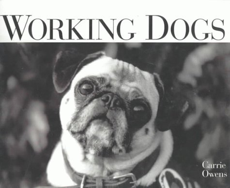 Carrie Owens Working Dogs