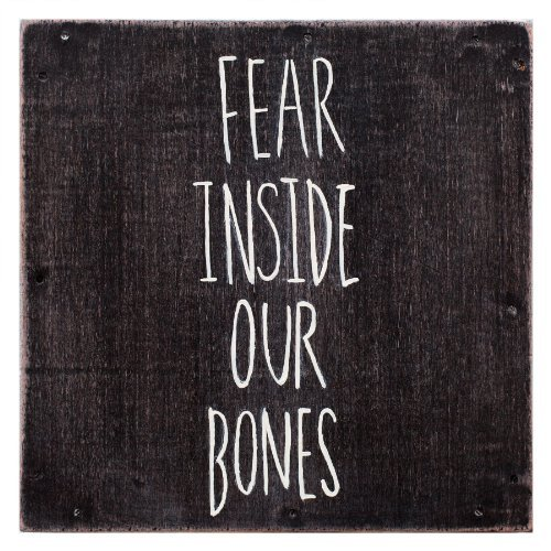 Almost Fear Inside Our Bones