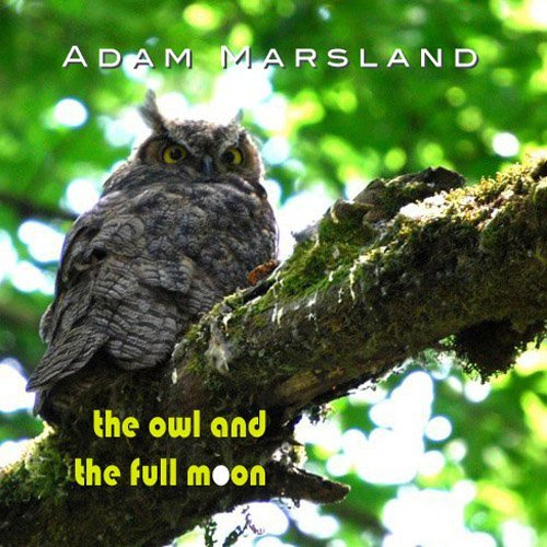 Adam Marsland Owl & The Full Moon