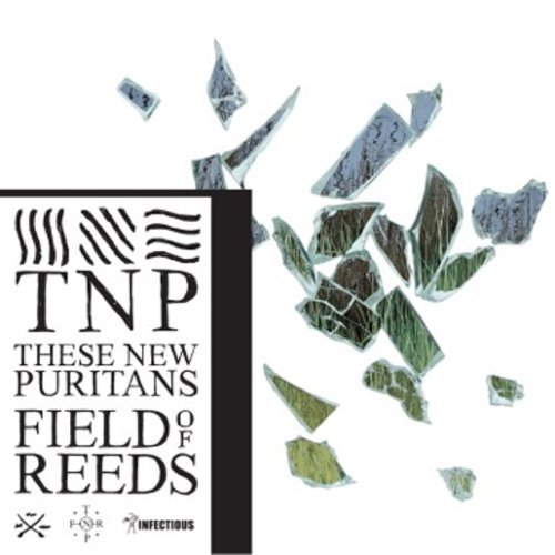 These New Puritans Field Of Reeds Import Eu