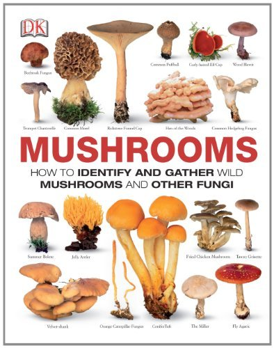 Thomas Laessoe Mushrooms How To Identify And Gather Wild Mushrooms And Oth