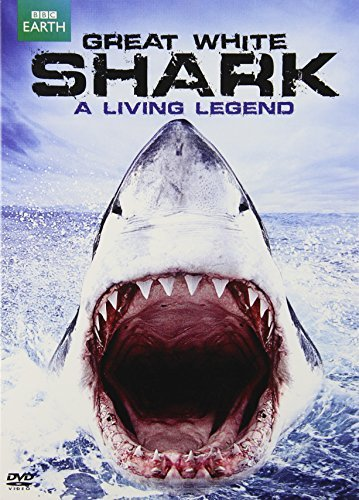 Great White Shark A Living Le Great White Shark A Living Le Nr