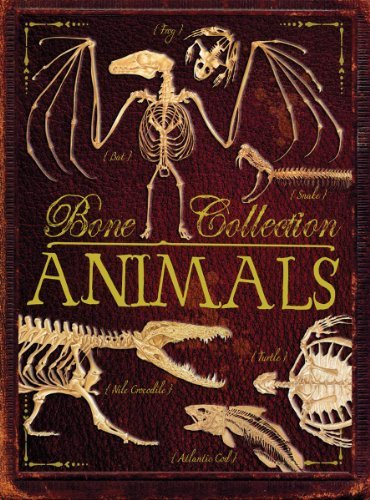 Rob Colson Bone Collection Animals
