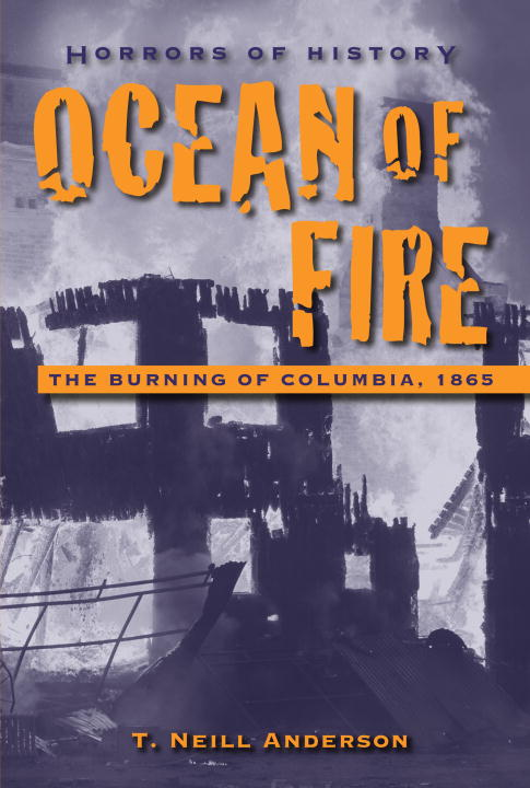 T. Neill Anderson Ocean Of Fire The Burning Of Columbia 1865