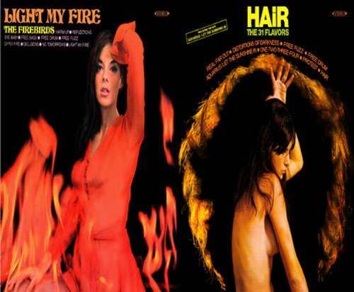 Firebirds & The 31 Flavors Light My Fire Hair
