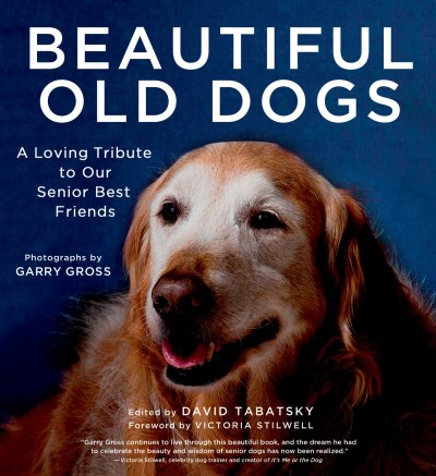 David Tabatsky Beautiful Old Dogs A Loving Tribute To Our Senior Best Friends