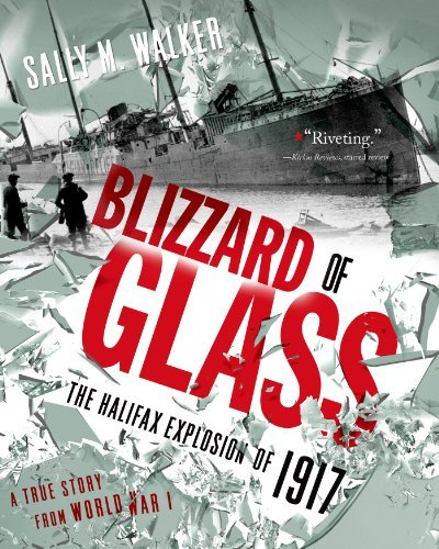 Sally M. Walker Blizzard Of Glass The Halifax Explosion Of 1917