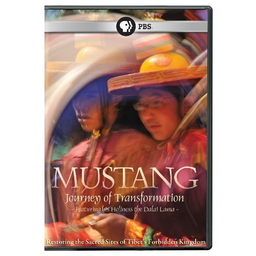 Mustang Journey To Transforma Mustang Journey To Transforma Ws Nr