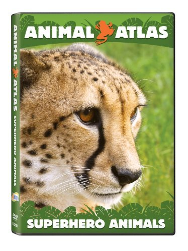 Superhero Animals Animal Atlas Nr