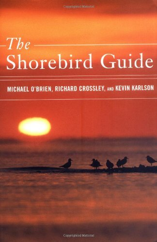 Michael O'brien The Shorebird Guide