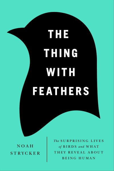 Noah Strycker The Thing With Feathers The Surprising Lives Of Birds And What They Revea