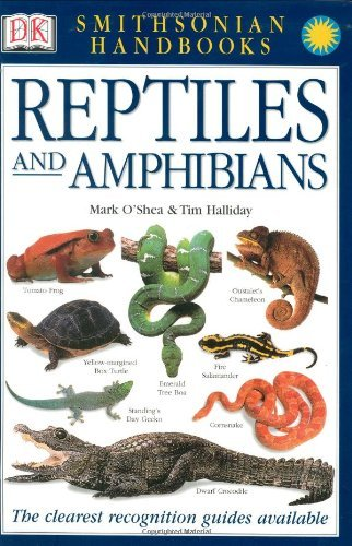 Mark O'shea Reptiles And Amphibians
