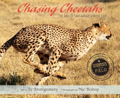 Sy Montgomery Chasing Cheetahs The Race To Save Africa's Fastest Cat
