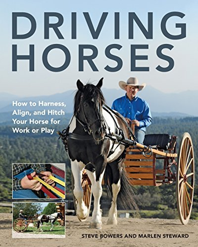 Steve Bowers Driving Horses How To Harness Align And Hitch Your Horse For W