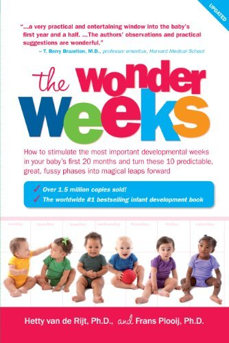 Hetty Van De Rijt The Wonder Weeks How To Stimulate Your Baby's Mental Development A Updated