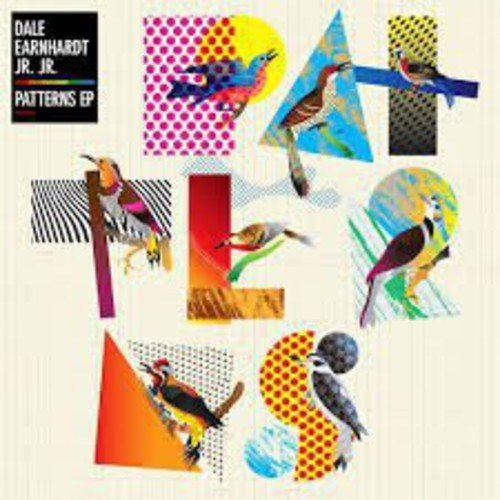 Dale Earnhardt Jr. Jr. Patterns Incl. Digital Download