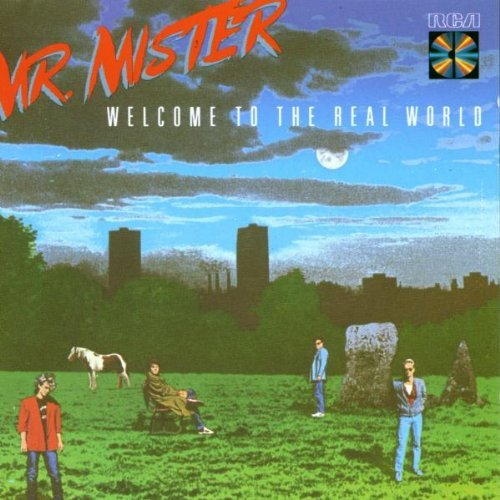Mr. Mister Welcome To The Real
