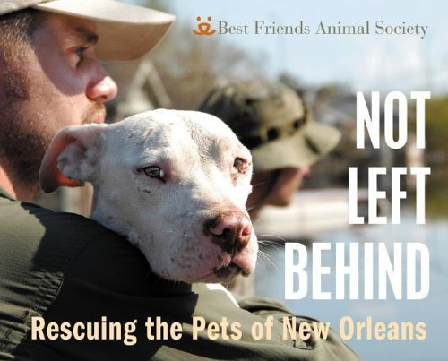 Best Friends Animal Society Not Left Behind Rescuing The Pets Of New Orleans Rescuing The Pets Of New Orleans