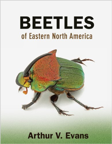 Arthur V. Evans Beetles Of Eastern North America