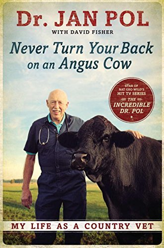 Jan Pol Never Turn Your Back On An Angus Cow My Life As A Country Vet
