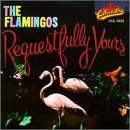 Flamingos Requestfully Yours