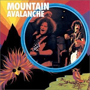 Mountain Avalanche
