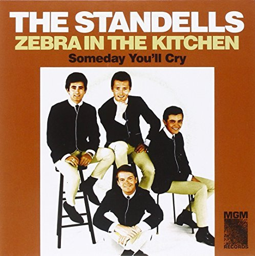 Standells Zebra In The Kitchen Someday Y 7 Inch Single