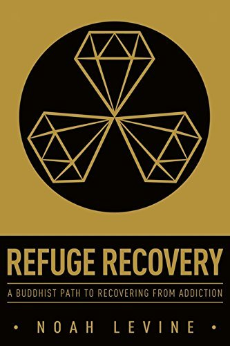 Noah Levine Refuge Recovery A Buddhist Path To Recovering From Addiction
