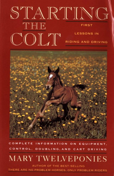 Mary Twelveponies Starting The Colt