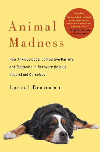Laurel Braitman Animal Madness How Anxious Dogs Compulsive Parrots And Elephan