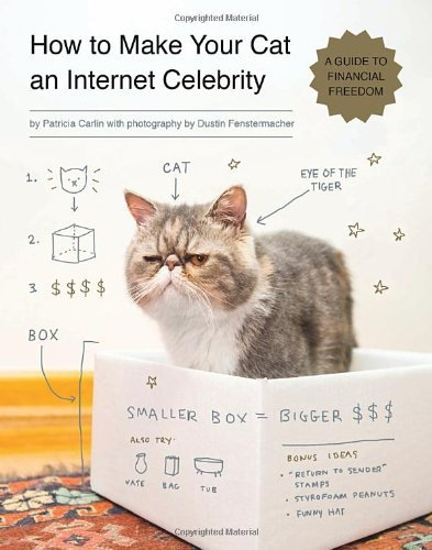 Patricia Carlin How To Make Your Cat An Internet Celebrity A Guide To Financial Freedom
