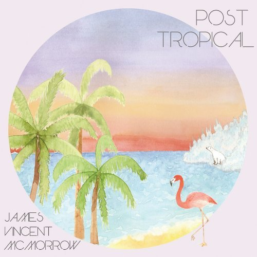 James Vincent Mcmorrow Post Tropical