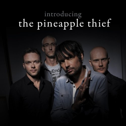 Pineapple Thief Introducing