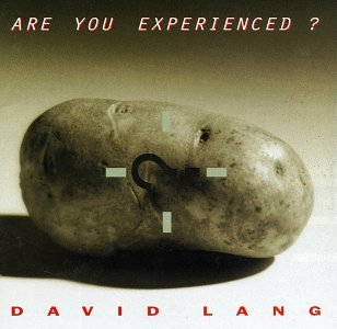 D. Lang Are You Experienced? Rozen Lang Schulte Oppens & Vaillancourt Various
